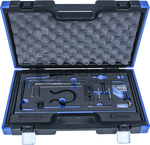 Timing gereedschap Set, PSA / Fiat 2.0 en 2.2 L