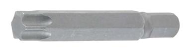 Bitlengte 50 mm 10 mm (3/8) aandrijving Torx (voor Torx) T60